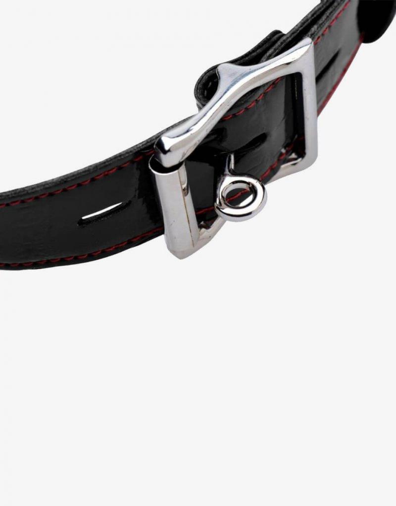 Gagget er låsbart - man kan bruge en normal hængelås til at fastgøre gagget