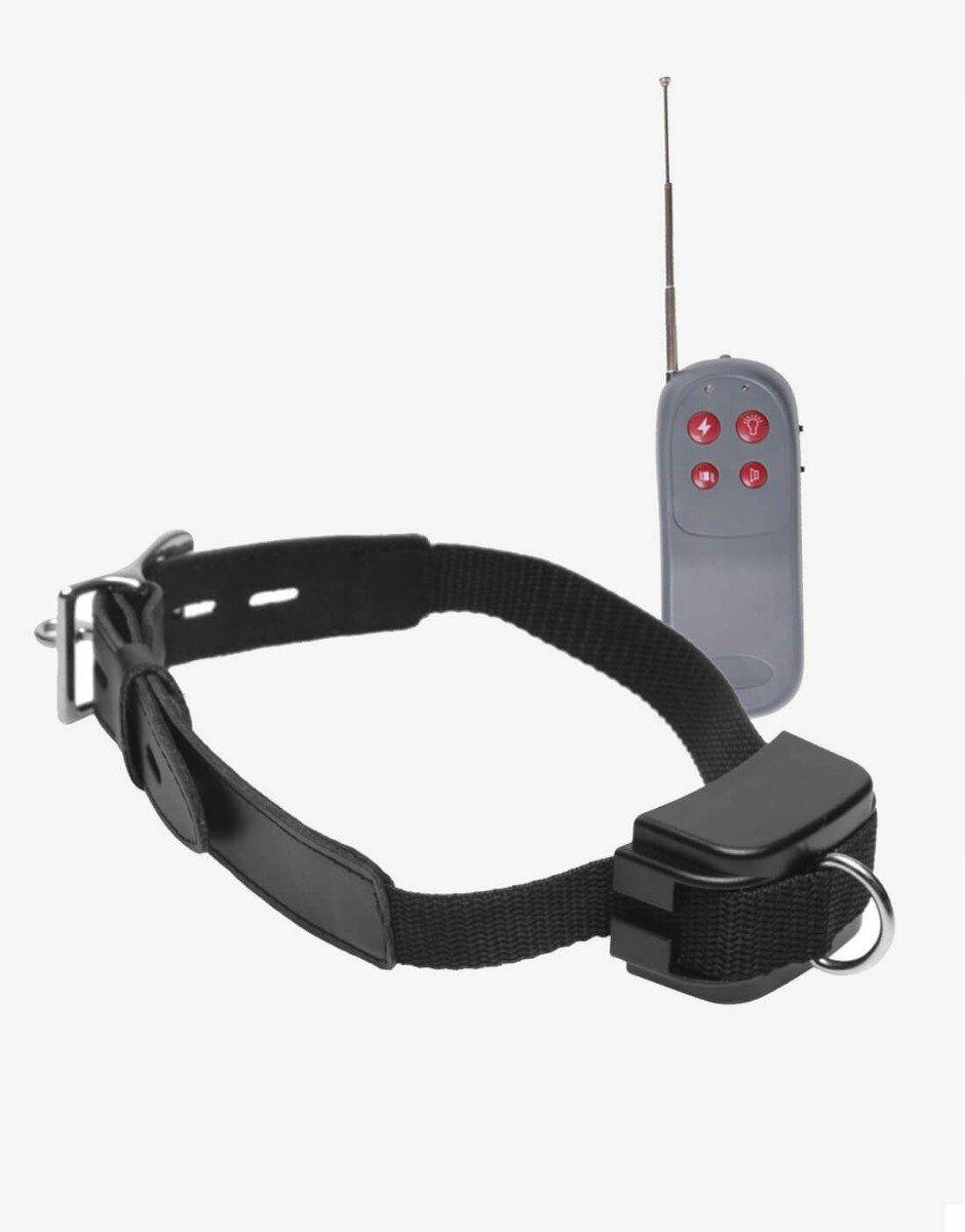 Jolt elektro træningshalsbånd består af halsbånd og fjernbetjening